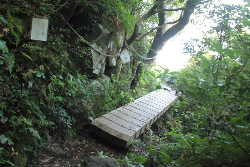 20140531-開聞岳-0470.jpg