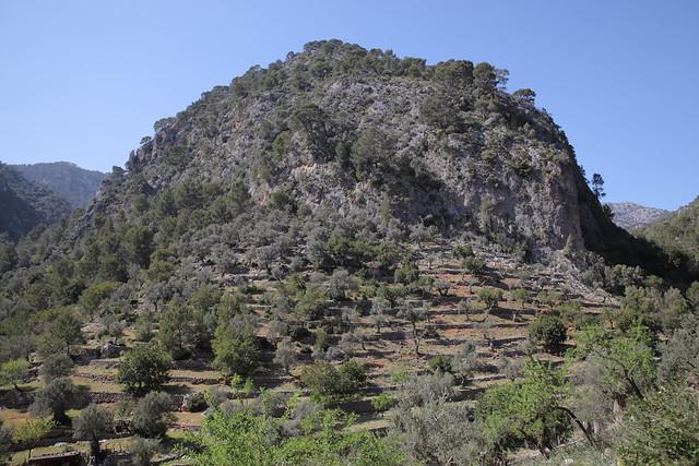 Majorca (Mallorca)