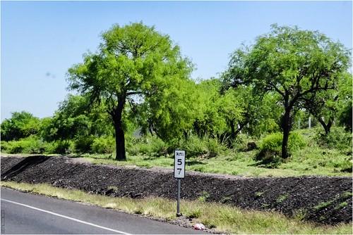 paisajes méxico mx carreteras sanluispotosí villahidalgo