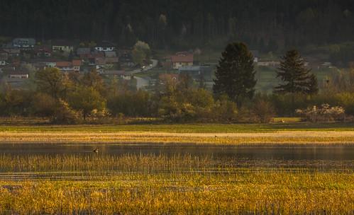morning lake water sunrise slovenia slovenija karst intermittent cerknica