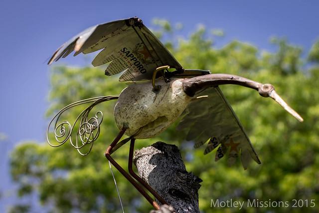 sapporo bird