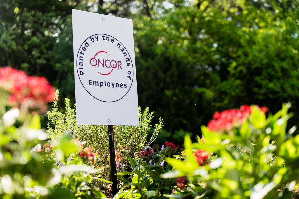 Earth-Day-2016-Oncor-02719
