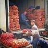 რომ ვერ გცნობენ და უცხოელი რომ ჰგონიხართ, იმის პლუსები :) Georgian bazaar.  #Tbilisi #HumansOfTbilisi #streetphotography #vendors #potatoes #Georgia #bazaar