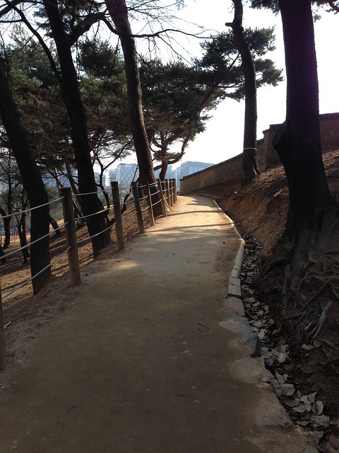 Dirt paths throughout the park