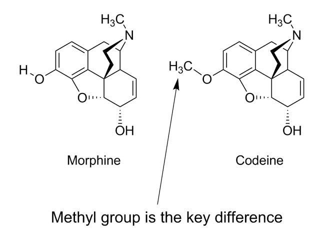 morphine 2