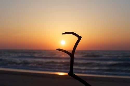 sunset sea beach japan seaside spring nikon niigata tainai 2015 d90 oldlens nikkorsc50mmf14c