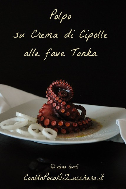 Polpo - Octopus