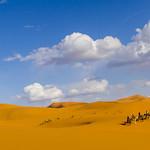 Sahara Foto