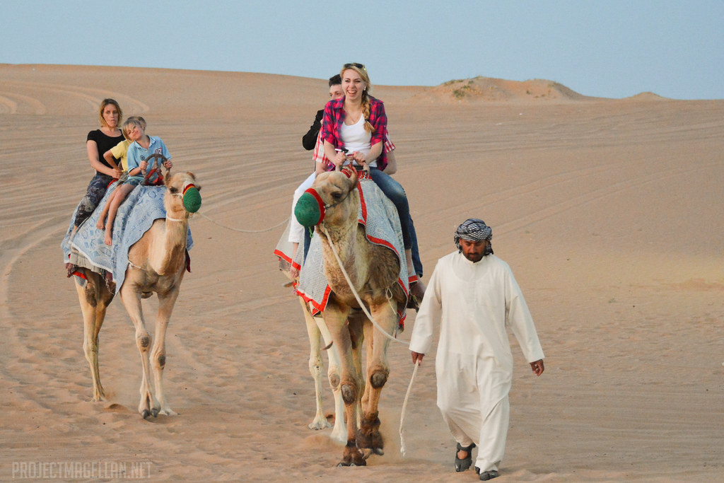 Camel Ride, Desert Safari, Arabian Night, Dubai, United Arab Emirates, UAE