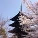 Sakura 2015 by haskellbooks