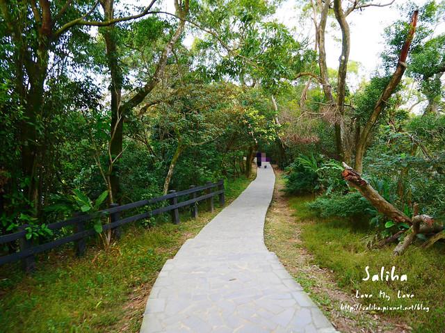 台北登山爬山象山步道 (30)