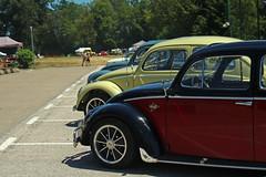 Rassemblement VW Rioz Juillet 2016