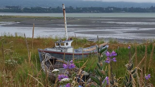 Homer Bristol Bay gil netter