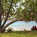 Million Dollar Beach Vanuatu