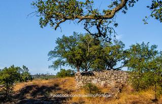 Bild av Citânia de Briteiros nära Póvoa de Lanhoso. portugal archaeology foto castro guimaraes fotografia turismo braga norte minho arqueologia bracaraaugusta briteiros citania pedraformosa