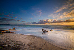 """muzzpix-nz posted a photo:Facebook      500px    WebsiteThe more i look at the driftwood shape on the right the more i see a figure of something that has been washed ashore ... don""""t know of what tho ."""
