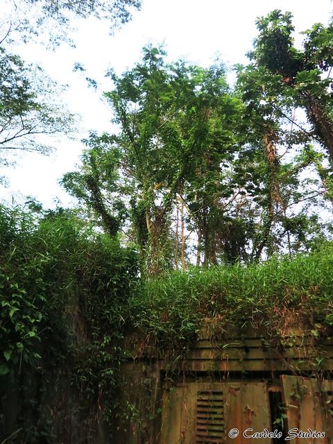 Talbot's Hill Bunker 06