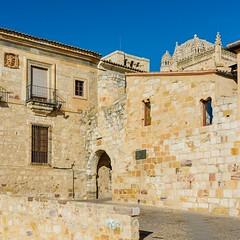 Ciudad de Zamora. Puerta del Obispo