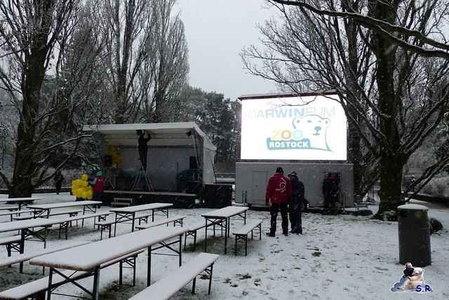 Eisbär Taufe Fiete Zoo Rostock 31.03.21015 14