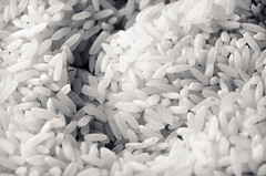 Black and White Rice I