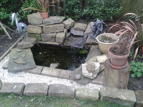 My pond as it was.