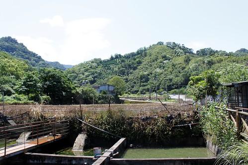 位於苗栗獅潭鄉的清泉農場保種池,主人何恭炤於1994年即從事原生淡水魚保種。(圖片攝影:羅聿)