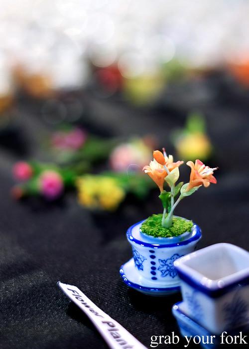 Mini potted flower at Wellington Underground Market, Wellington