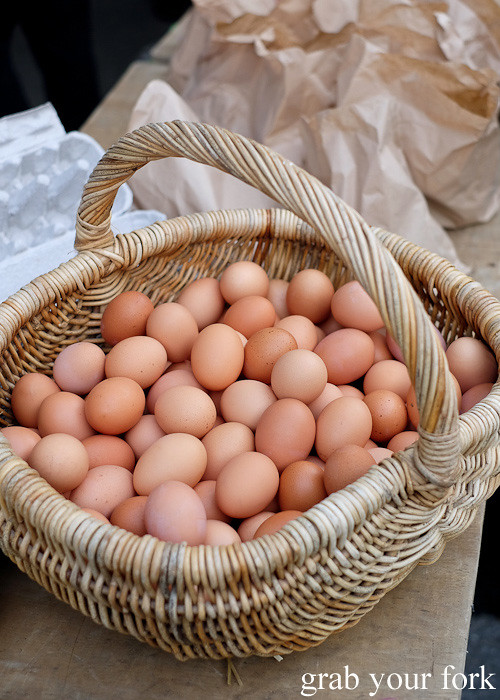 Free range eggs at Thorndon Farmers' Market, Wellington