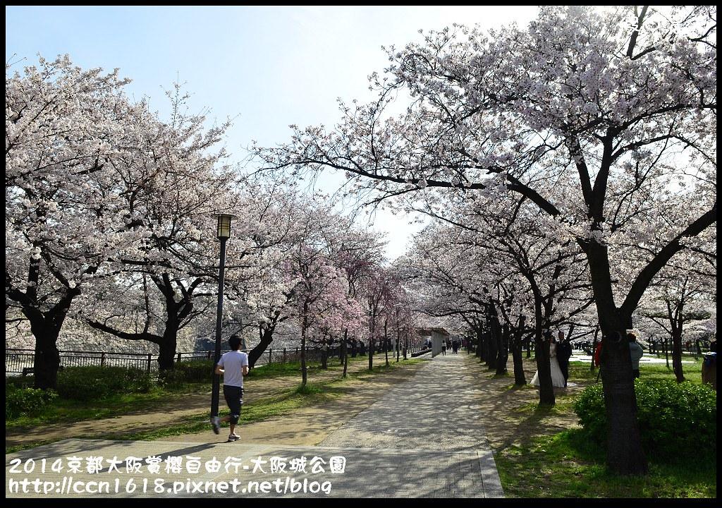 2014京都大阪賞櫻自由行-大阪城公園DSC_1674