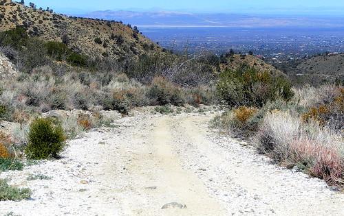overlooking phelan and high desert