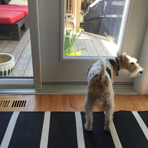 Piper wants out.