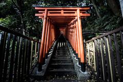 Hie Shrine - Tokyo