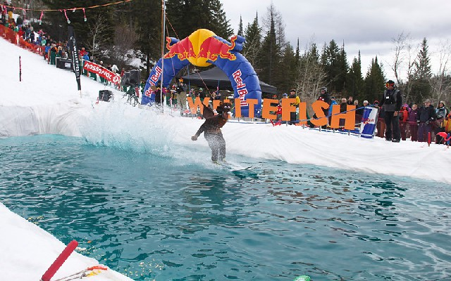 Whitefish pond skim