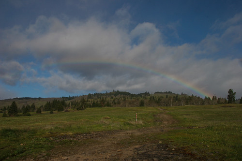 Catherine Creek Trailhead Meadow