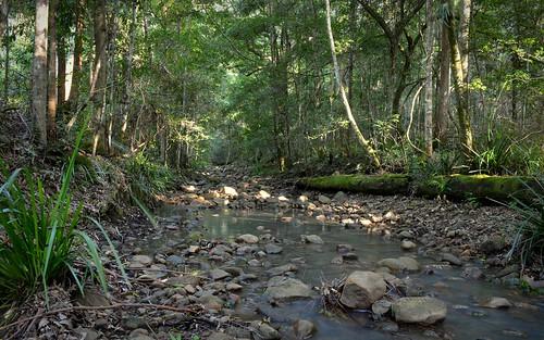 Black Camp Creek