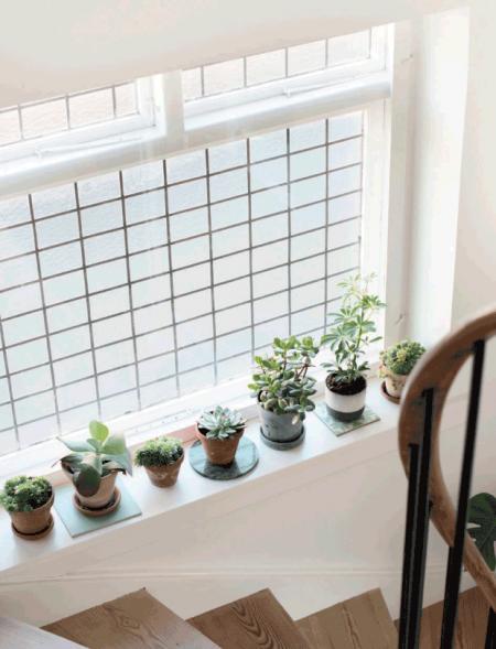 06-decoracion-con-plantas