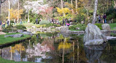 Kyoto Garden 05 Apr 2015