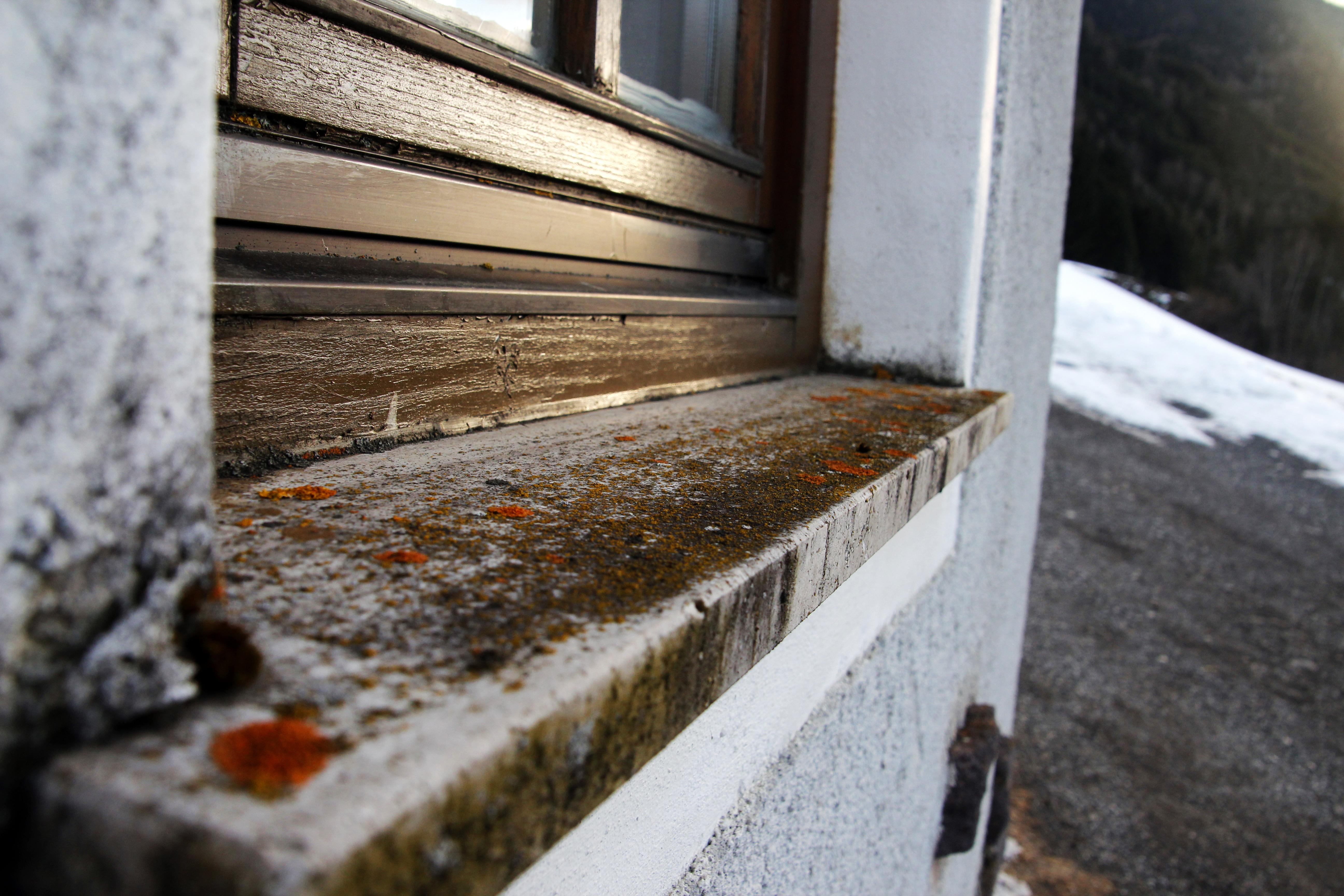 Fenster brett