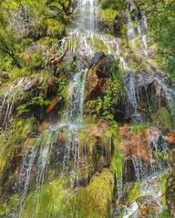Jonkershoek run last Sunday. Enchanted waterfall. #trailrunning #nature #mountains #stellenbosch