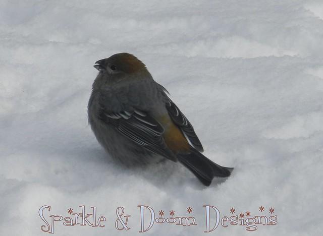 blog2012.11.25 ph04