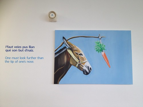 Guernsey donkey