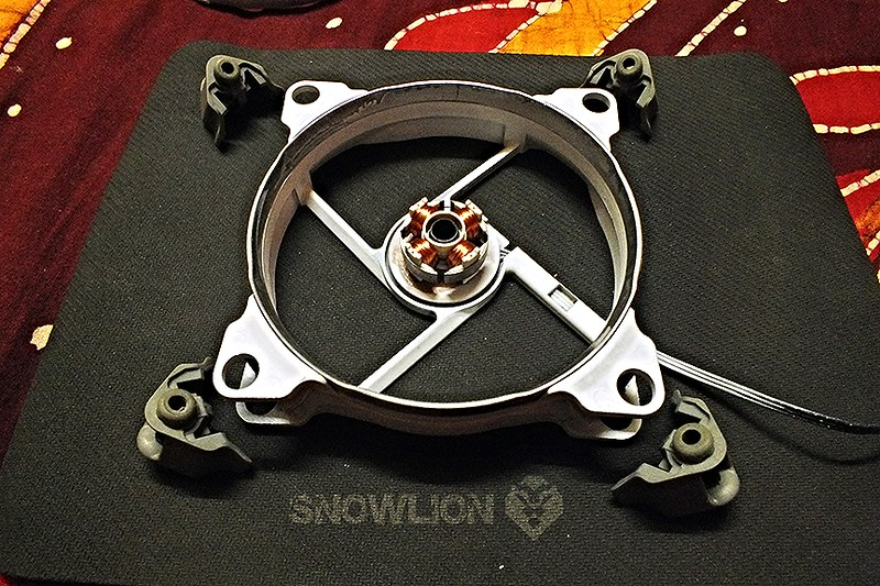 snowlion35