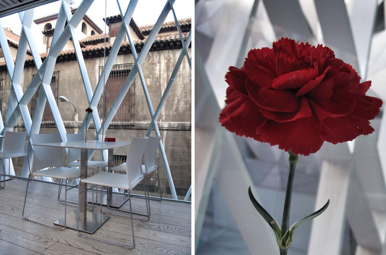 museo abc_madrid_aranguren gallegos_rehabilitacion_cafeteria_amaniel