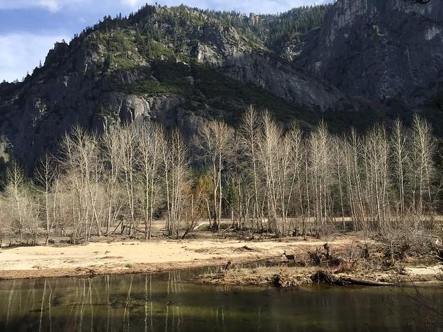 Merced River, Yosemite Valley