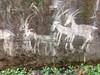 Graffiti Glyphs
