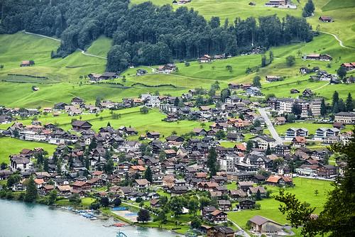 verde green suiza sony a700 dslra700