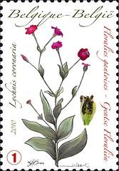 06 Floralies timbreb