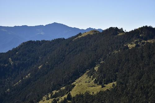 雪山雪東線-黑森林