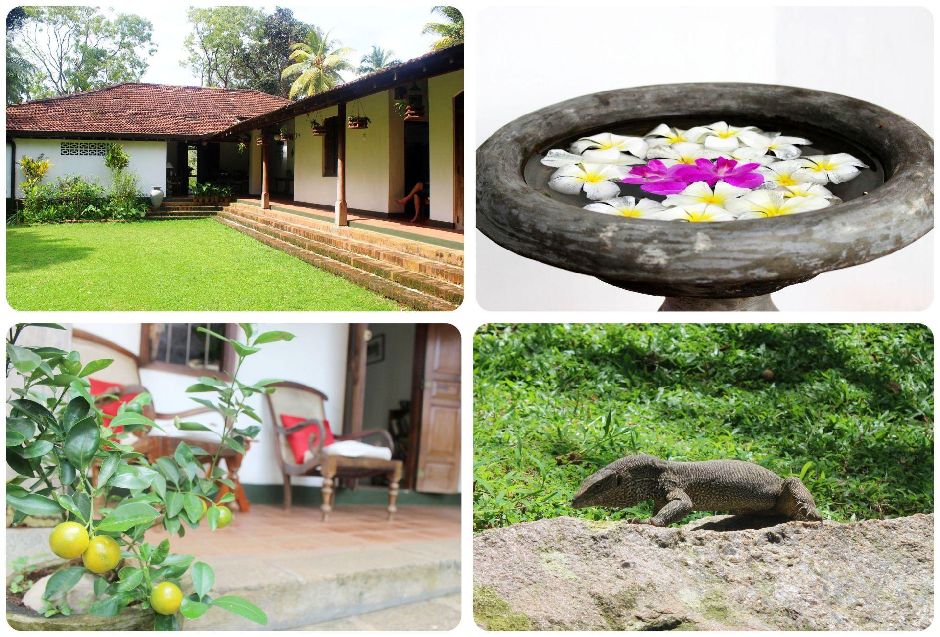 Sri Lanka Villa Templeberg near Galle