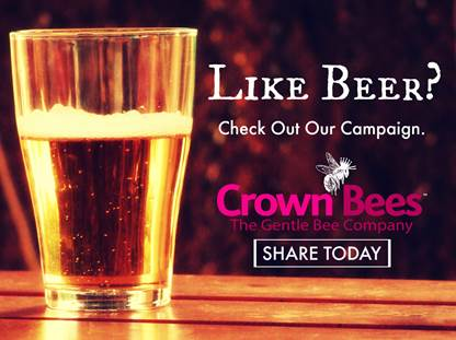 beer-and-bees
